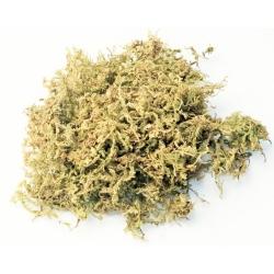 Sphagnum Moss, 150gr